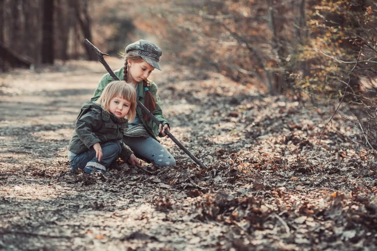 Naturforscher-Expedition