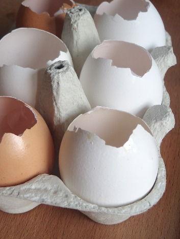 Eier Leeren