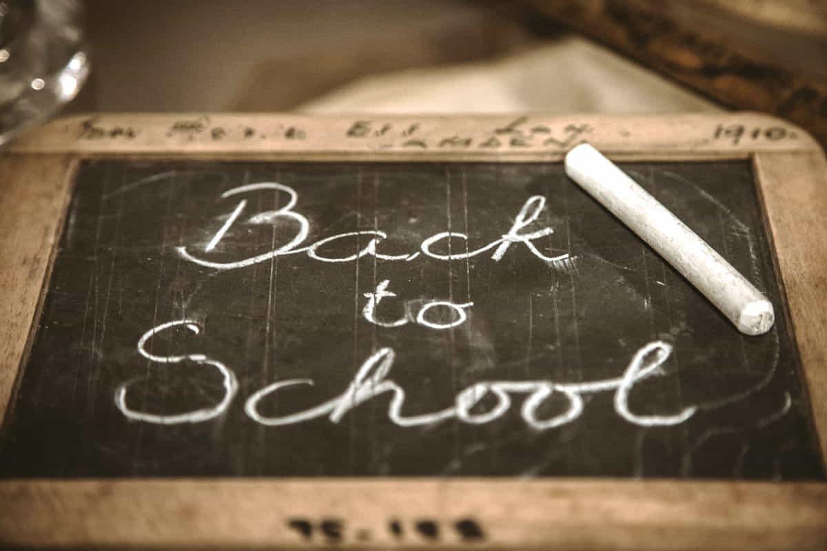Schulsystem, Schule